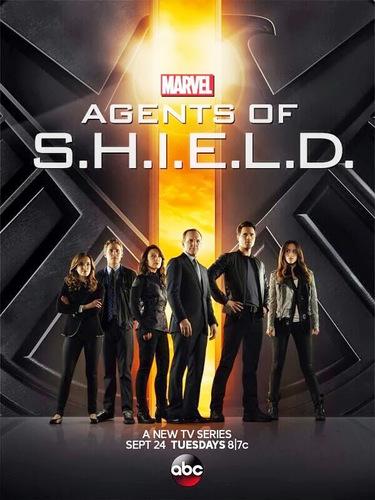 Download Agents of S.H.I.E.L.D. Season 1 TV Series Subtitles